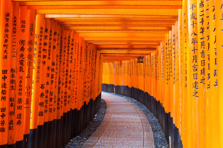 KYOTO, JAPAN - MARCH 18  Fushimi Inari Shrine on March 18, 2013 in Kyoto, Japan  Thousands of torii gates straddle a network of trails  A walking path leads through a tunnel of torii gates   Editöryel