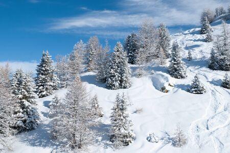 arcs: Beautiful winter landscape with fir trees, Les Arcs, France