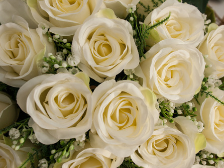 A bouquet of white roses