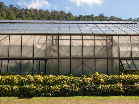 front elevation: the front elevation of Greenhouse cultivation Stock Photo