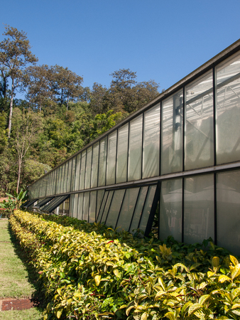 the front elevation of Greenhouse cultivation Stock Photo