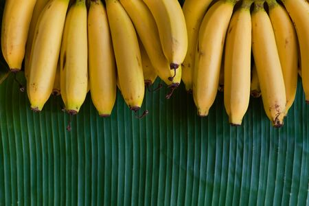 A beautiful and fresh yellow bananas place on a fresh green banana leaf Banco de Imagens