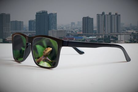 Abstract illustrations reflecting the vision of leaders and sustainable development between the growth of urban society and the environment.By reflecting of the natural image through the lens of glasses that look at the big city.