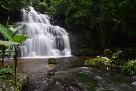 clear water Waterfall