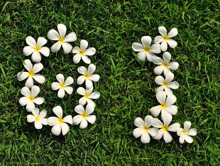Number tropical flower on grass 0-1 photo