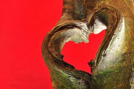 fantasize: Tree in heart shape Stock Photo