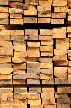 Wood piling up photo