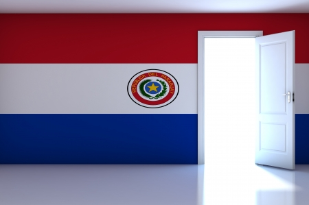 bandera de paraguay: La bandera de Paraguay en la sala vac�a