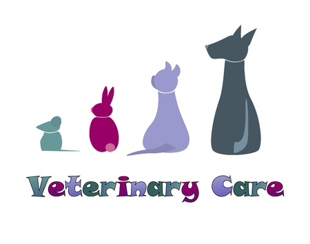 Veterinary Icons of Animals, Colorful pets Vector