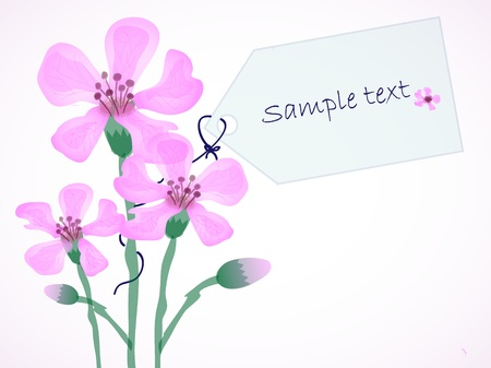 colorize: Pink Flowers with text card, area for your text Illustration