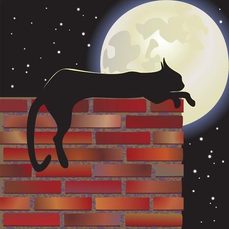 nocturnal cat  moon Vector