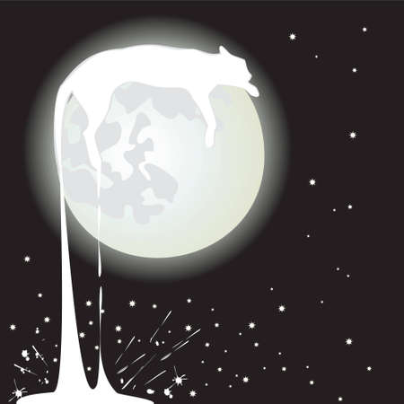 moon  cat white on black background Vector