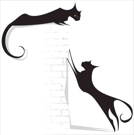 black cats on white background Illustration