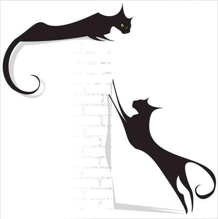 black cats on white background Illustration