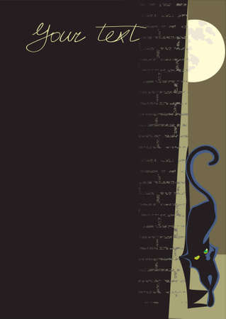 black cat background for text Vector
