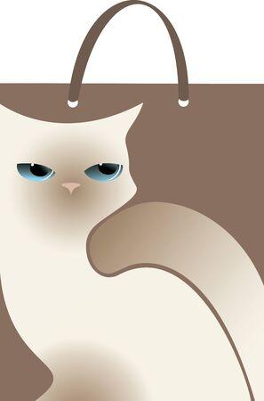 white cat: package white cat on dark background Illustration