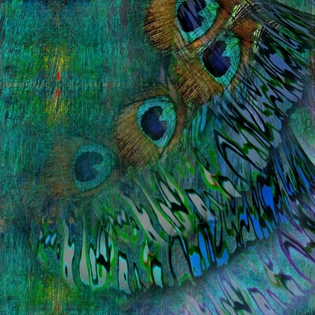 background green and  feather peacock