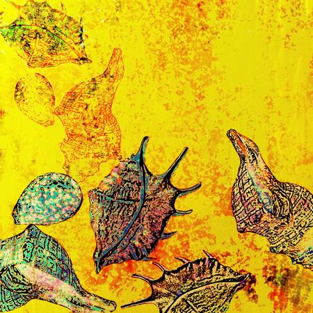 motley: background motley, stylized sea shells, summer motif Stock Photo