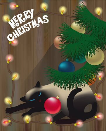 siamese cat: Siamese cat sleeping under Christmas tree