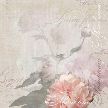 pfingstrosen: floralen Design Pfingstrosen Lizenzfreie Bilder