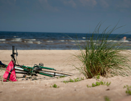 green plant bicycle laying on beach sand with sea in background