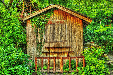 Small wooden house in jungle Stock Photo - 40084830 & Small Wooden House In Jungle Stock Photo Picture And Royalty Free ...