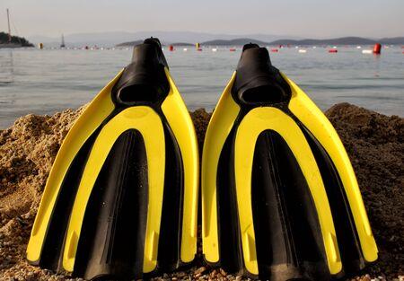 flipper: jaune et noir flipper couleur sur les sables