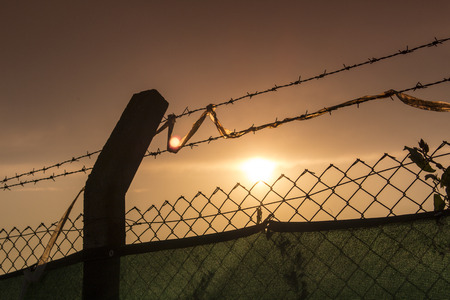 barbed wire frame: wire silhouette with sky and sun at dusk