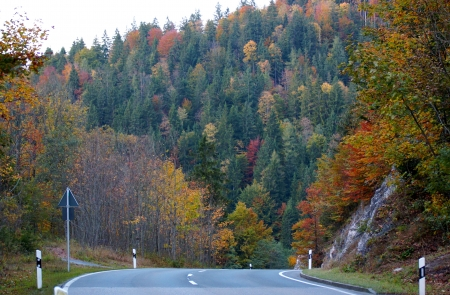 road in the mountains and forest on the mountain in autumn photo