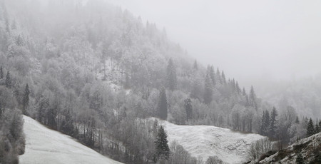 inconstant: fog over the alps