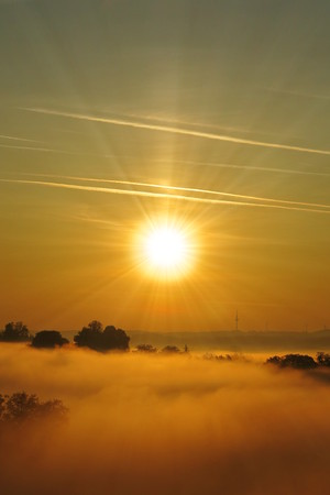 beautiful sunrise and covered by fog landscape vertical photo