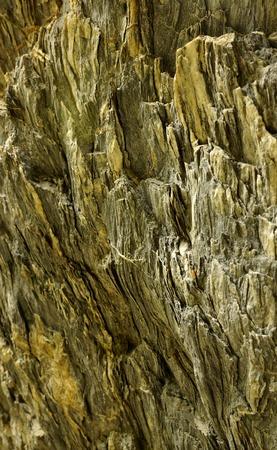 rock Stock fotó
