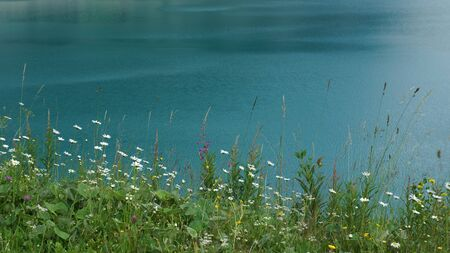 abstact resort on the beautiful green-blue quiet water and wildflower meadow Stock fotó