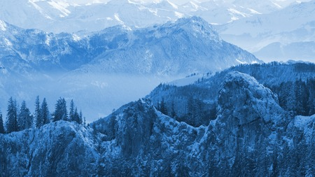 misty and sunny and snowy peaks of the mountains and trees