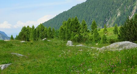 Idyllic landscape in the Alps in Austria in Europe