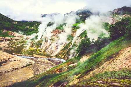 kamchatka: The legendary Valley of Geysers in the summer. Kamchatka, Russia. Selective focus Stock Photo