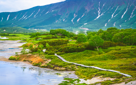 fumarole: Fumarole fields on the volcanic caldera Uzon.  Kamchatka, Russia. Selective focus Stock Photo