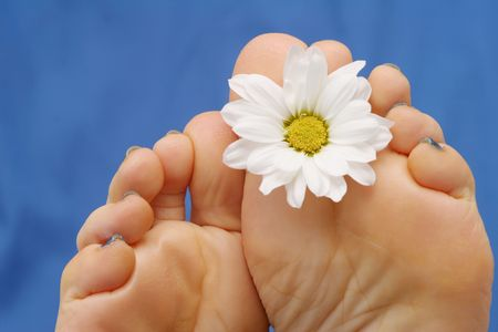 female soles: Feet with flower