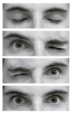 ojos cerrados: Detalle de los ojos