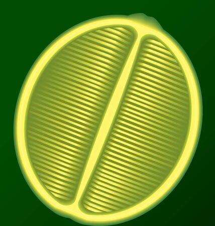 longitudinal: fresh lime in a longitudinal section on a green background Stock Photo