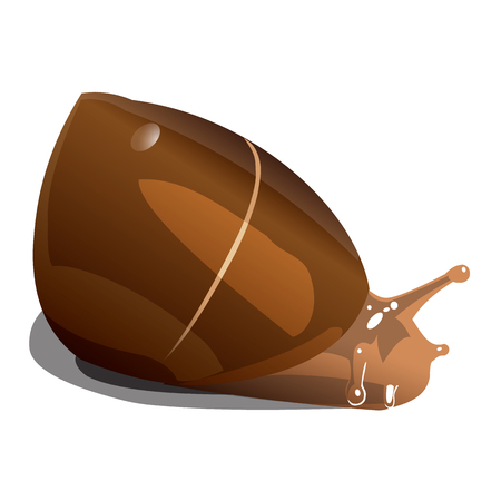 brown river snail on white background, isolate Illustration