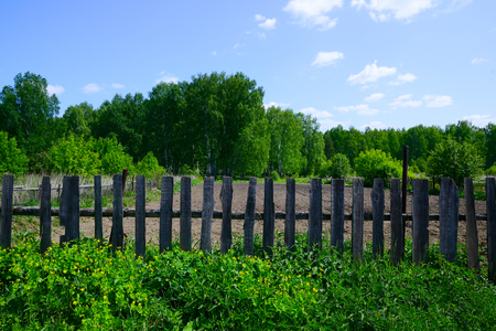 Stock Photo   The Garden On The Edge Of A Forest Surrounded By An Old Fence  And A Growing Bush