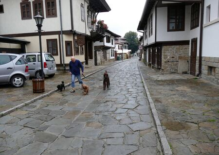 Tryavna, Bulgaria 26 June 2018. A gloomy rainy day. A stranger walks his dogs through the old town.