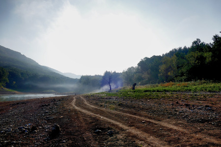 Dirt road on the river. Backlight with fog.