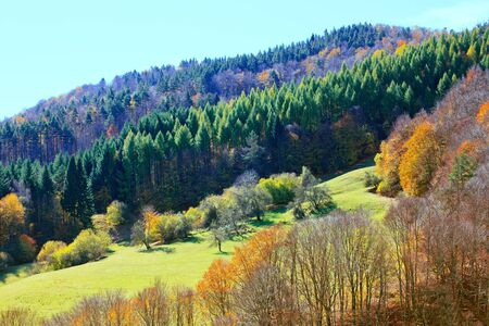 Autumn panorama of Rhodope mountain - Bulgaria.