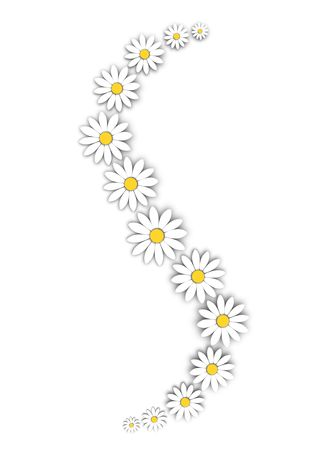 daises:  White flowers decoration
