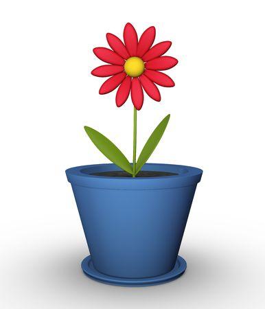 flower pots: Flower in a pot