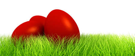 Red eggs in green grass