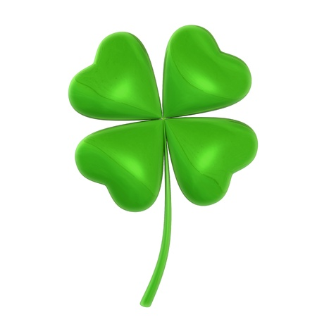 lucky clover:  Four-leaf shiny shamrock  isolated on white
