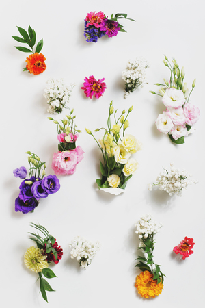 Flowers on a white background Stock Photo